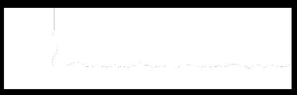 Logo Progressis Blanc